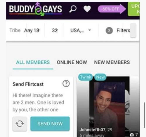 Buddygays profile